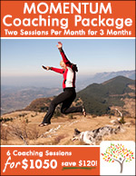 momentum coaching package